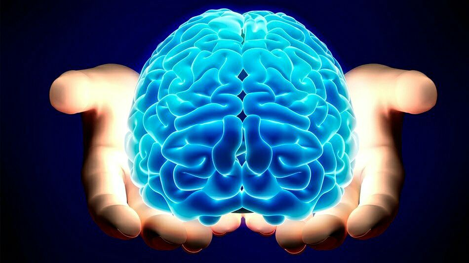 Влияние воздуха на мозг